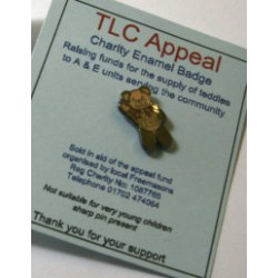 TLC Teddy Bear Lapel pin
