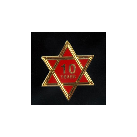 10 Year Chapter Lapel pin
