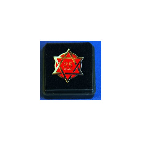 25 year Chapter lapel pin