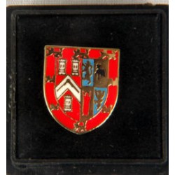 Coat of Arms Lapel Pin