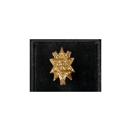 O.S.M Lapel pin