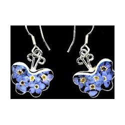 F.M.N Butterfly Earrings