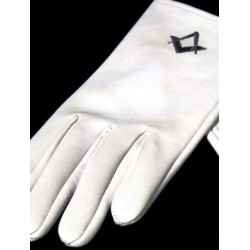 White Kid Leather Gloves with D/B/ Sq/c