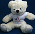 Teddy Bear with Masonic tee-shirt